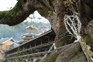 Sacred Tree, Guizhou