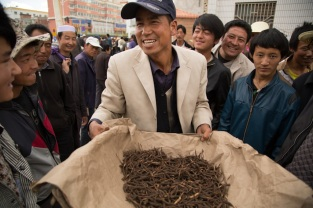 Caterpillar Fungus Market, Gansu