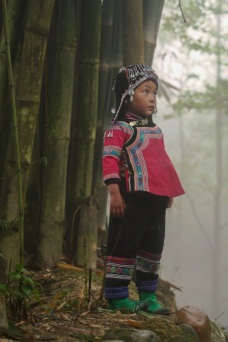 Forest girl, Yunnan