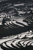 Terraces, Yunnan