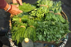 Herbs © Jo James