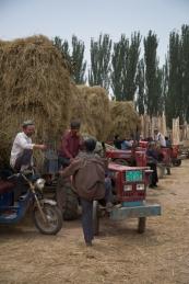 Hay markey, Shufu near Kashgar