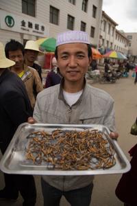 Caterpillar Fungus For Sale, Hezuo © Jo James