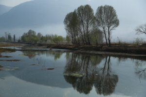 Reflections in Shaxi, Yunnan