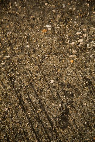 Footprint, Soko Islands