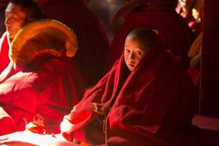 A young tulku ('living buddha'), Serxu