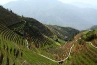 Hiking trails, Longji © Jo James