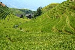 Hiking to Zhong Liu Village, Longji © Jo James