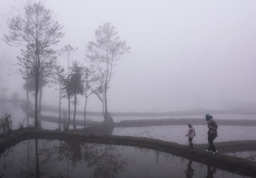 Misty day Yuanyang © Jo James