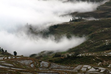Duoyishu at dawn, Yuanyang © Jo James