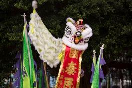 Lion, Cheung Chau
