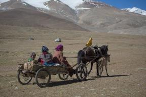 Local transport