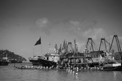 Monotone boats
