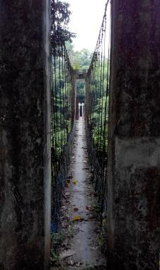 Jungle bridge, Taman Negara