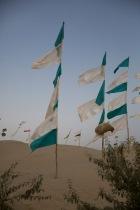 Desert shrine, Khotan