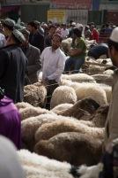 Sheep market madness ahead of Xinjiang's Korban festival