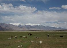 Karakoram backdrop, Tashkurgan