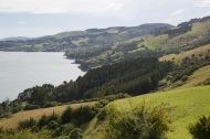 Freewheeling along Highcliff Road, Otago Peninsula