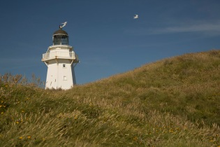 Lighthouse, Waipapa Point