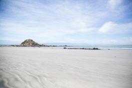 Monkey Island, NZ