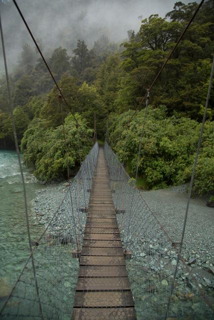 Hollyford trailhead, Fiordland